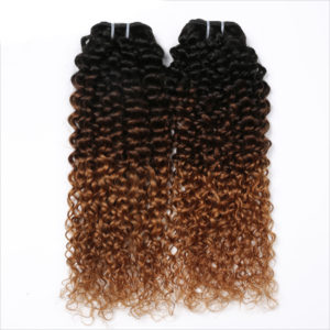 Ombre Curly Human Hair Extensions