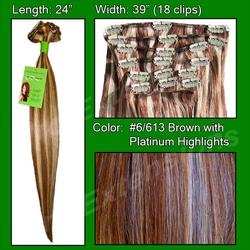 #6/613 Chestnut Brown w/ Platinum Highlights – 24 inch Remy