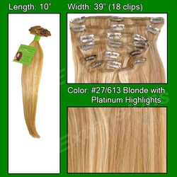 #27/613 Golden Blonde w/ Platinum Highlights – 10 inch