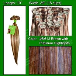 #6/613 Chestnut Brown with Platinum Highlights – 10 inch