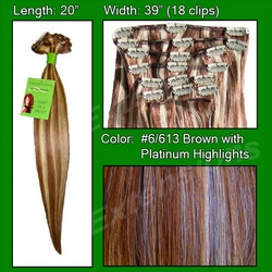 #6/613 Chestnut Brown w/ Platinum Highlights – 20 inch